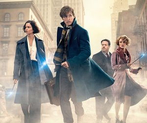 wallpaper and fantastic beasts image