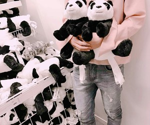 fashion and panda image