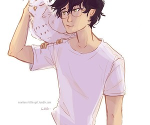 harry potter and edwiges image