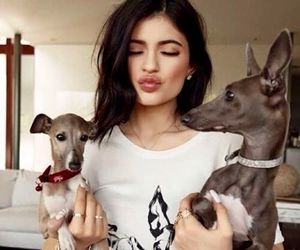 kylie jenner, dog, and kylie image