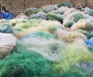 färgfärg and fishing net image