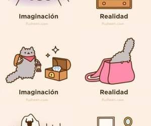 :) and gatitos image