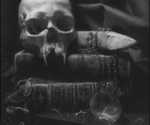 skull, vampire, and book image