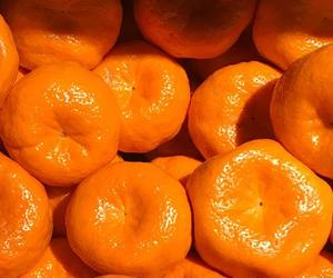 orange and mandarin oranges image