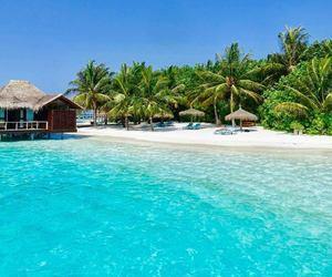 beach, ocean, and holidays image