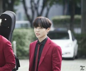 korean, the rose, and sammy image