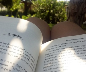 book, holiday, and trees image