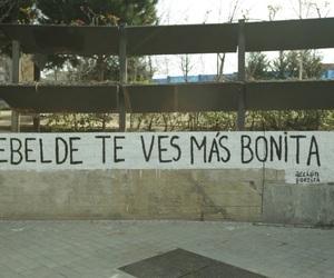 acción poética and rebelde image