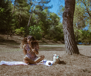 forest, summer, and girl image