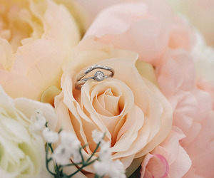 accessories, flower, and flowers image