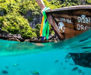 fish, boat, and summer image
