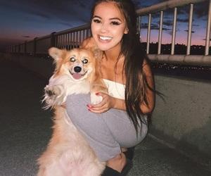 corgi, sky, and best smile image