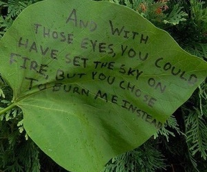 quotes, green, and leaves image