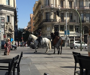 chevaux, Espagne, and horse image