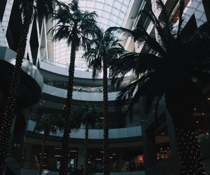 palms, shop, and sky image