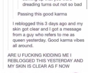 karma, reblog, and tumblr image