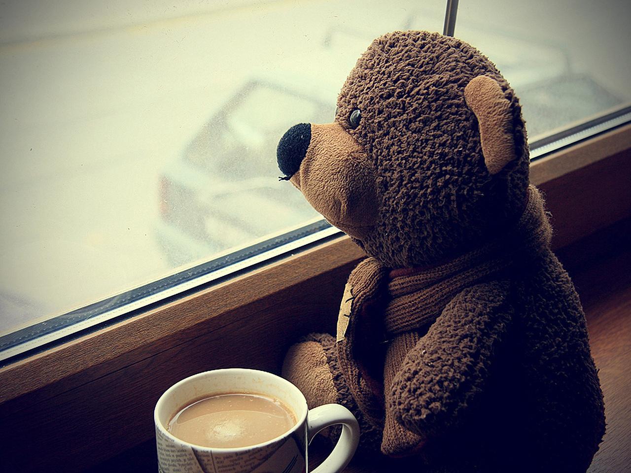 bear, coffee, and teddy image