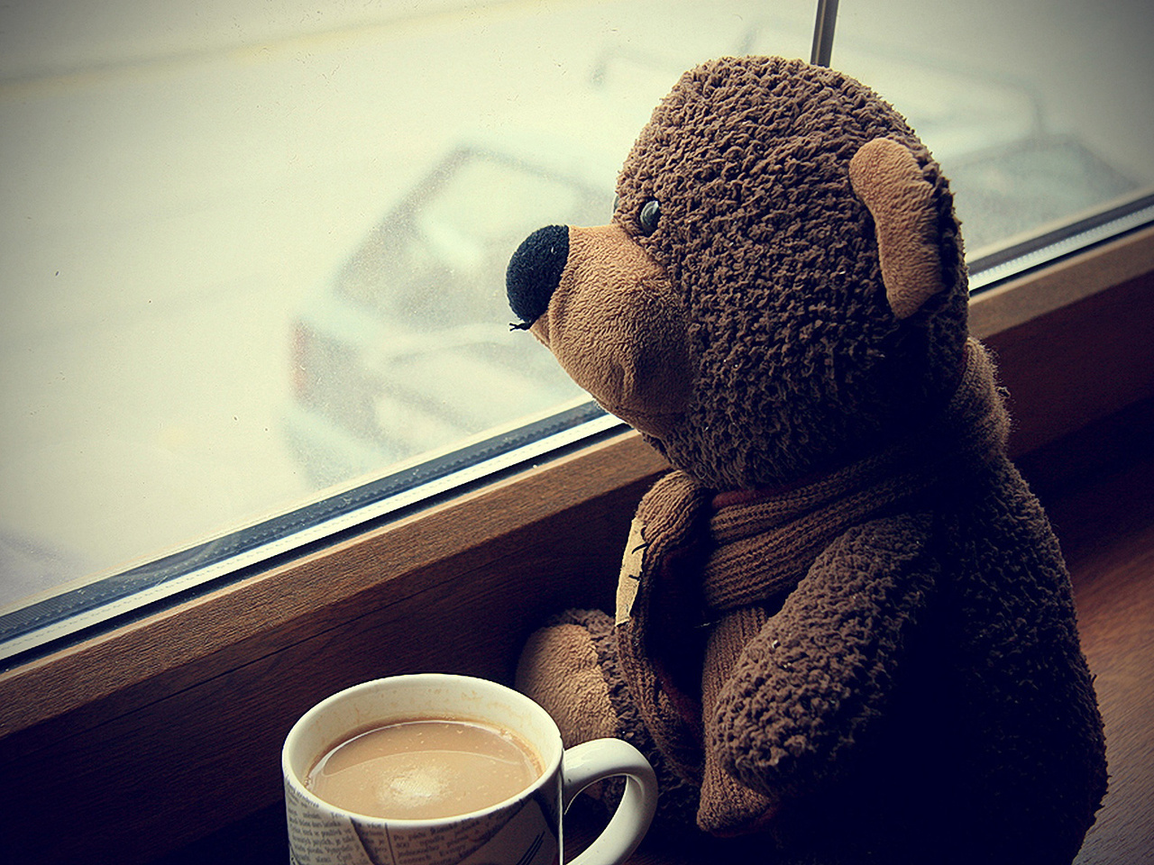 bear, coffee, and teddy image