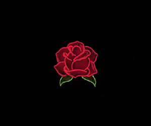 header, rose, and Lyrics image