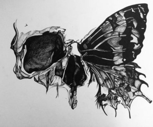 butterfly, skull, and black image