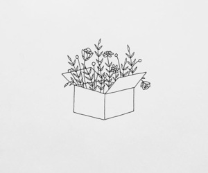 flowers, art, and box image