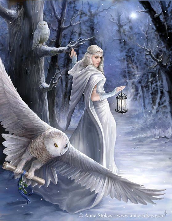 owl, fantasy, and snow image
