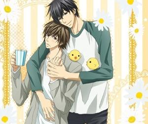 anime, manga, and junjou romantica image