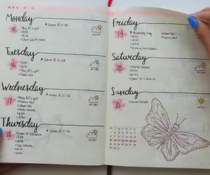 butterfly, flower, and journal image