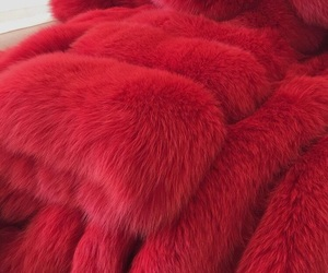 red, fashion, and fur image