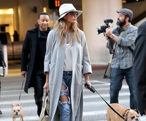 fashion, style, and dog image