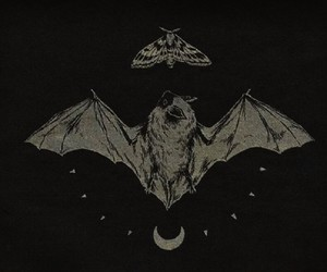 bat, goth, and witch image