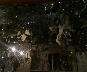 chandelier, cute, and seeded eucalyptus image