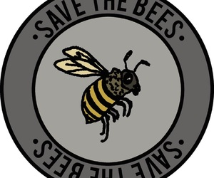 bees, conservation, and save the planet image