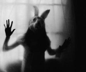 rabbit, bunny, and mask image