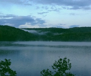 clouds, 5am, and forest image