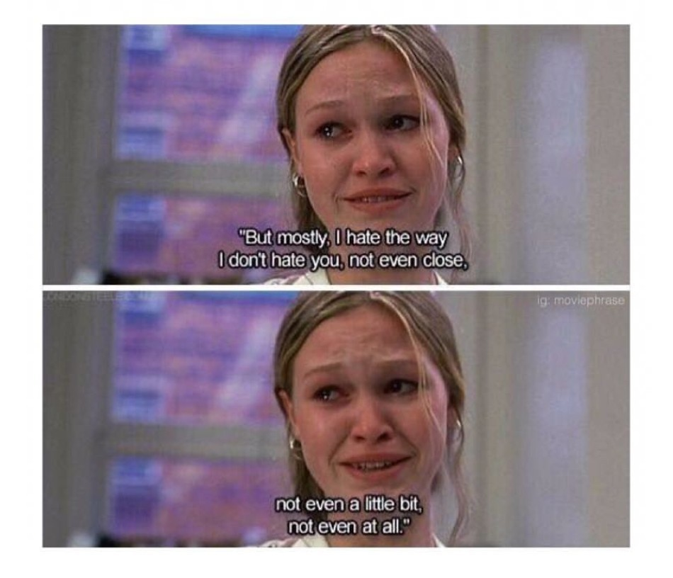 love and 10 things i hate about you image
