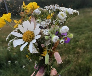 bouquet, field, and nails image