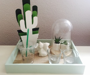 cactus, candles, and starbucks image