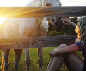 horse, girl, and sun image
