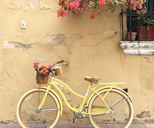 flowers, yellow, and bike image
