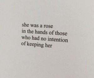 quotes and rose image