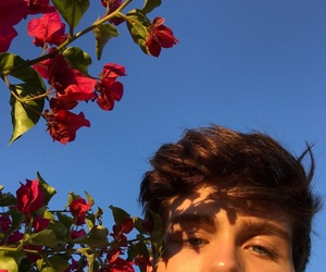 boy, flowers, and icon image