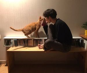 boy, cat, and aesthetic image