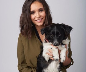 Nina Dobrev, dog, and the vampire diaries image