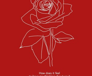 red, rose, and quotes image