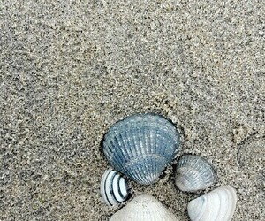creative, ocean, and photography image