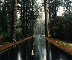 rain, road, and trip image