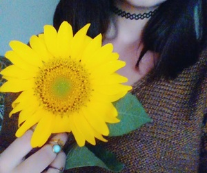 flower, yellow, and happiness image