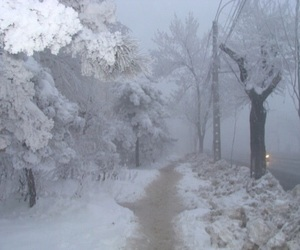 snow, winter, and pale image
