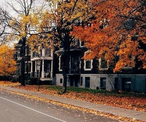 autumn, inspiration, and city image